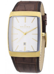 Skagen Stainless Steel with Leather Band Mens Watch