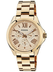 Fossil Women's Cecile Rose Dial Rose Gold Tone Watch AM4511